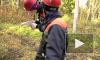 Сбитому  пилоту  не  помогли. В Невском лесопарке прошел  слет юных спасателей.