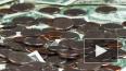 России вернут около 3 млрд долларов долгов за военную ...