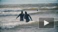 Как петербургские серферы зимой покоряют Финский залив