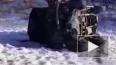 В Амурской области в лобовом ДТП погибли 5 человек
