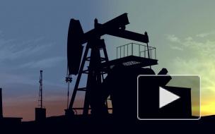 """""""Нафтогаз Украины"""" поставил """"Газпрому"""" свои условия по газовым спорам"""