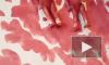 """""""И мальчики кровавые в глазах"""": сенатор Мизулина получит картину, посвященную бэби-боксам"""