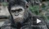 Фильм «Планета обезьян: Революция» (2014) бьет рекорды кассовых сборов