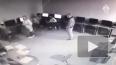 В Подмосковье сотрудники ГИБДД незаконно выдавали права