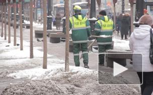 За три года прирост населения в Петербурге составил 3%