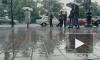 Этой весной погода в Петербурге побила несколько рекордов