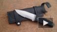Мужчина убил в Бирюлево трехлетнего ребенка, возмущенные ...