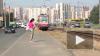 ФАС проверит тарифы на проезд в общественном транспорте ...