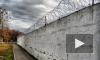 В Вологодской области местный житель пытался передать заключенным мобильники весьма необычным способом