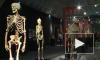Выставка трупов оскорбила чувства православных верующих
