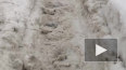 Жители Набережной Фонтанки утопают в снегу