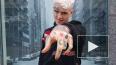 Смерть рэпера Lil Peep: американские и русские рэперы ...
