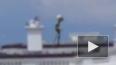 Китаец снял на видео гуманоида на крыше Белого дома