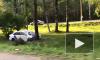 На Приморском шоссе каршеринг врезался в дерево