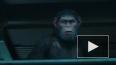 """""""Планета обезьян: Война"""": в сети появился финальный ..."""