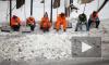 В Кронштадте доказали: россияне лучше мигрантов убирают снег