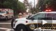В синагоге в Питтсбурге произошла стрельба