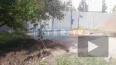 Местных жителей побеспокоила вырубка деревьев во дворе н...