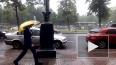 Синоптики: в начале недели ливни накроют Ленобласть