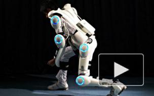 """""""Ну и гаджеты"""": поисково-спасательный робот, экзоскелет и скейтборд"""
