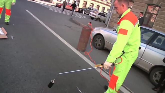 Новый вид дорожной разметки