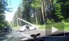 Автомобиль придавило столбом на Приморском шоссе: видео
