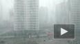 В Петербург с понедельника придут ливни и сильный ветер