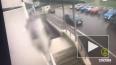 Нетрезвый водитель-романтик в Шушарах прокатил полицейск ...
