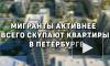 Мигранты активнее всего скупают квартиры в Петербурге
