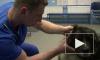 Ветеринару, осужденному за кетамин, скостили только полгода