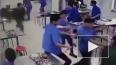 Видео: в Китае дикий кабан ворвался в столовую, разогнал ...