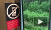 РЖД выплатит компенсации пассажирам опоздавших накануне поездов