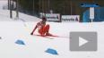 Незадачливый лыжник из страны, где не бывает снега, ...