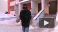 Тео на снегу. Как петербургские африканцы спасаются ...