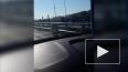 Видео: на Ушаковском мосту у едущего автомобиля убежало ...