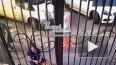 Видео: в Ростове-на-Дону фельдшер пнул ногой выпившую ...