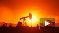Трамп просил Эр-Рияд не опускать цены на нефть до ...