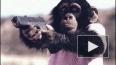 Защитники животных: Мартин Скорсезе искалечил шимпанзе