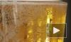 Пивная компания представила первые в мире бумажные бутылки
