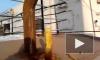 Фаллический сталагмит вырос в Петербурге из-за сильных морозов