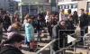 """Станцию метро """"Улица Дыбенко"""" проверяли более полутора часов"""