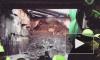 "Щит ""Надежда"" добрался до Васильевского острова от метро ""Улица Савушкина"""