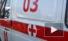 На Каменноостровском проспекте кусок лепнины зашиб девочку, школьницу увезли в больницу