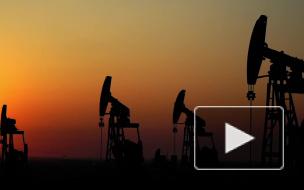 Трамп эмоционально прокомментировал присутствие военных США у нефтяных полей в САР