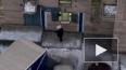 """""""Почта России"""" пообещала уволить сотрудника, кидавшего ..."""