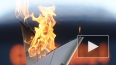 Олимпийский огонь в Новочеркасске 21.01: маршрут, ...