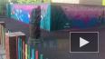 В Петербурге появилось яркое граффити в честь Дня ...