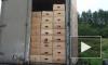 В Псковской области белорусский водитель угнал с таможни грузовик санкционных помидоров