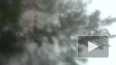 Под Тюменью 6-летнего мальчика убила молния
