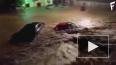 Страшное кадры с Майорки: Из-за наводнения погибло ...